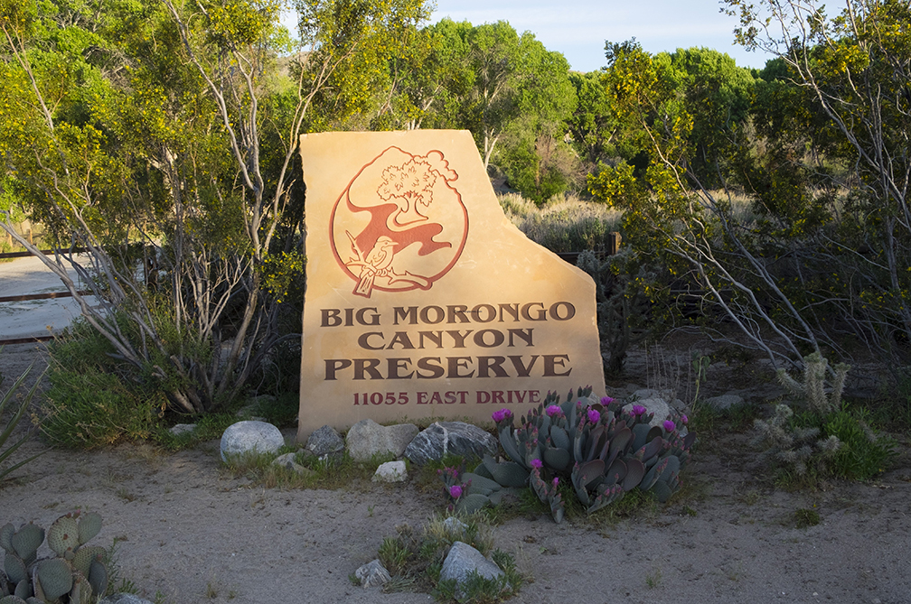Big Morongo Canyon Preserve, Public Lands Day, Sept 30, 2017