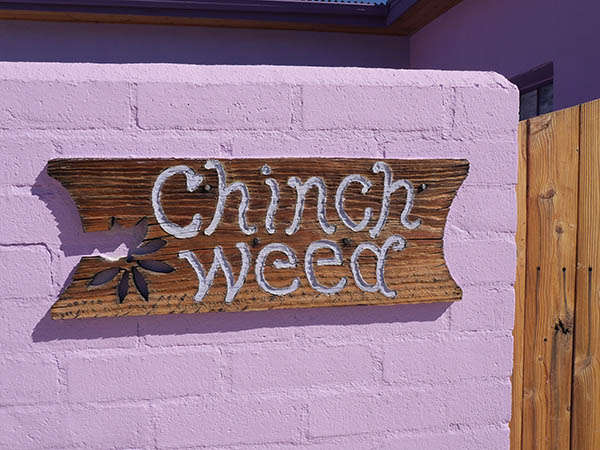 Hand carved Chinchweed adobe sign