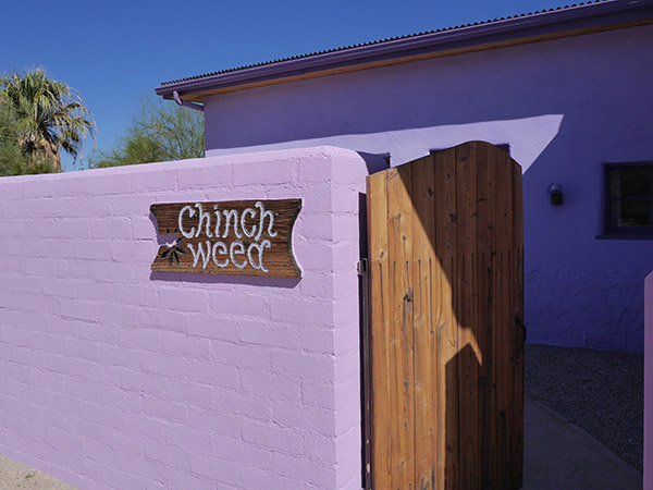 Entrance to Chinchweed Adobe Bungalow