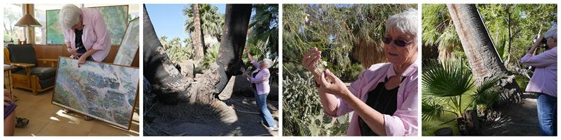Nature Walks with Pat Flanagan at the 29 Palms Inn