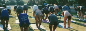 A group of people doing yoga on the lawn at 29 Palms Inn
