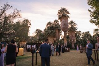 A gathering of people at dusk with palm trees in the background