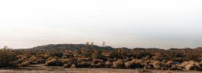 An image of a desert landscape